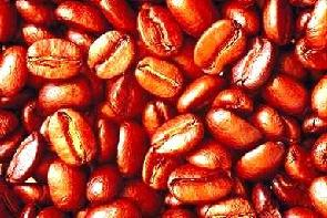 Coffee Beans - Lightly Roasted