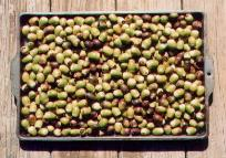 Tray of Acorns