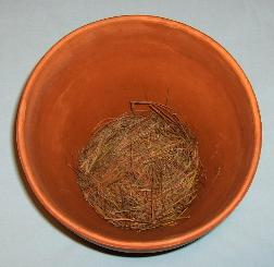 Layer of Brown Pine Needles on Bottom of Flower Pot